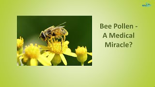 Bee Pollen - A Medical Miracle? - Health Benefits of Bee Pollen