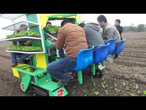 2ZBLZ--4 Self-propelled crawler type four lines vegetable transplanter