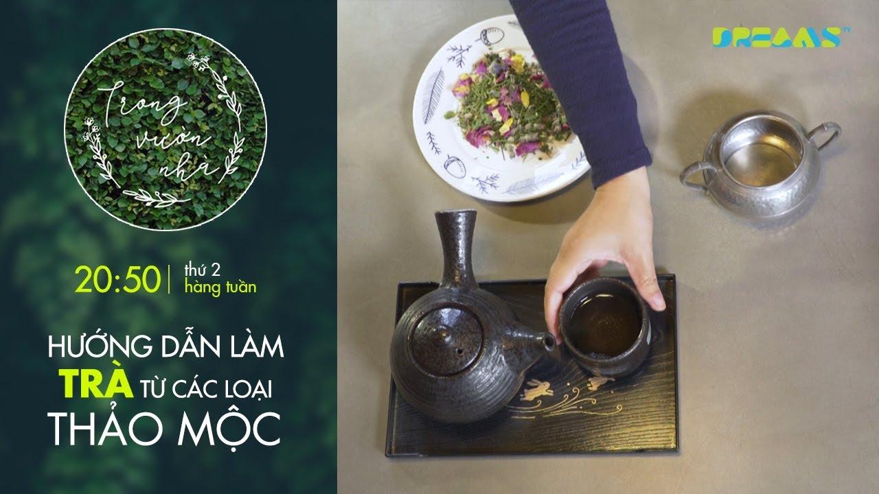 Trong Vườn Nhà | Tập 1: Hướng dẫn làm trà tại nhà từ các loại thảo mộc | DreamsTV - 2017