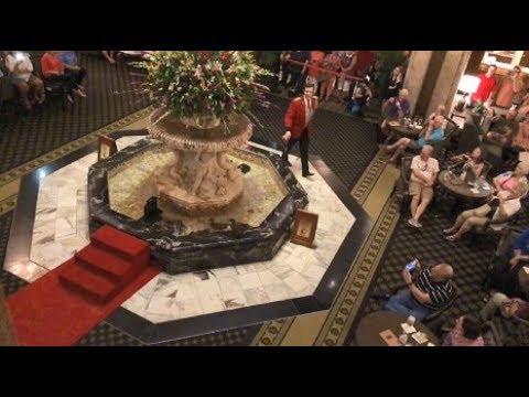 Memphis: Peabody Hotel Duck Parade