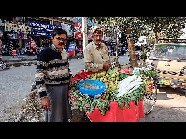 Опасный Пакистан. Исламабад. В мире животных #5