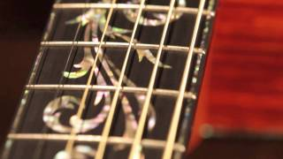 Taylor Guitars Presentation Guitar Series