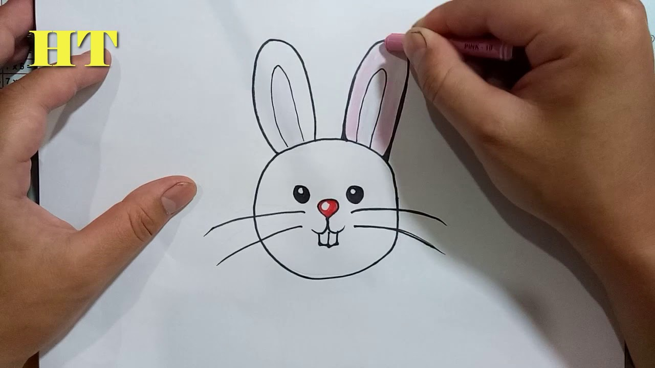 - How To Draw A Cartoon Rabbit Easy, Step By Step - YouTube