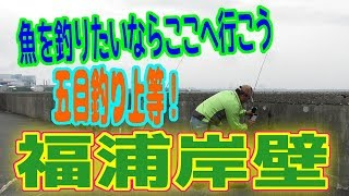 釣り動画ロマンを求めて 270釣目(福浦岸壁)