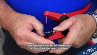 Applying Visual Tags with Allflex Universal Ear Tag Applicator