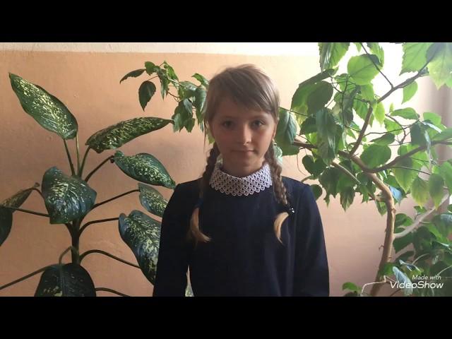 Изображение предпросмотра прочтения – ВикторияЛарькова читает произведение «Что ты мне подаришь, лето?..» (Орлов Владимир)