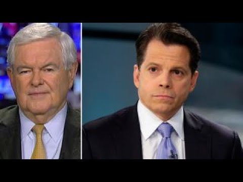 Thumbnail: Newt Gingrich: Scaramucci will be a fighter, but not hostile