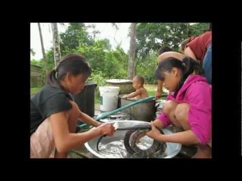 Coocking the snake, Laos