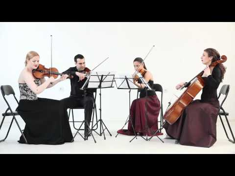 Habanera String Quartet - Hungarian Dance No. 5 - J. Brahms
