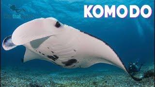 GirlsThatScuba & Insider Divers trip to Komodo