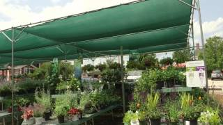 Shade Structures Part I: Why Shade Structures?
