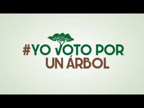 #YoVotoPorUnArbol Andrea F. Fundacion La Iguana