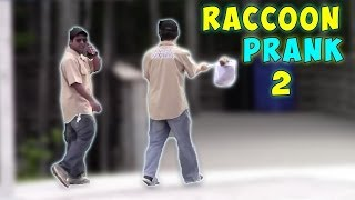 Raccoon Prank 2 (feat MagicofRahat)
