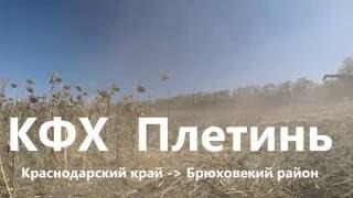 Агроток. КФХ Плетинь Р Б Уборка Подсолнечника