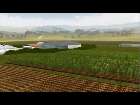 How does a biogas plant work?