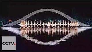 G20 Gala: Excerpt From Swan Lake