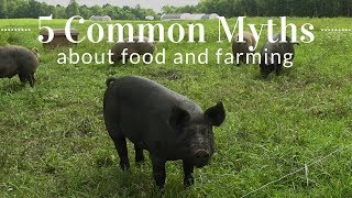 5 Common Myths About Food & Farming