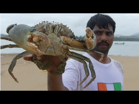 BIG CRAB CAUGHT AND COOKING IN GOA BACKWATER | CRAB CURRY  MAKING | SEAFOOD RECIPES