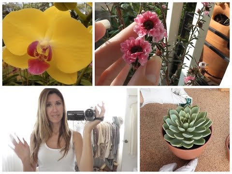 Cottage Living: Gardening, Bonsai, Orchids, Manuka
