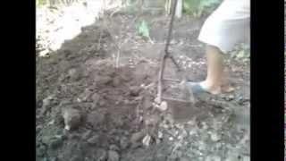 Garden Digger Tool Diy ( Bahçe Kazıcı Alet )