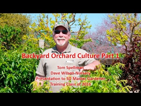 Backyard Orchard Culture Part 1 You