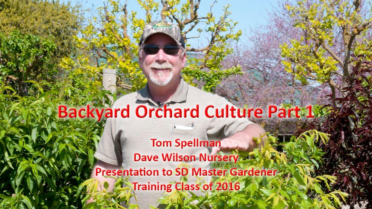 Backyard Orchard Culture Part 1