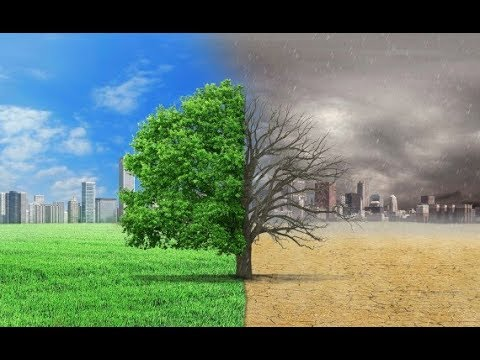 5G DEAD ZONES IN THE CITIES-TREES CAN SAVE US