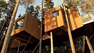 видео Самый дикий отель в лесах Швеции