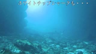 2010年5月5日、海況もよくなって太平洋側、ヒガシのポイントへ進...