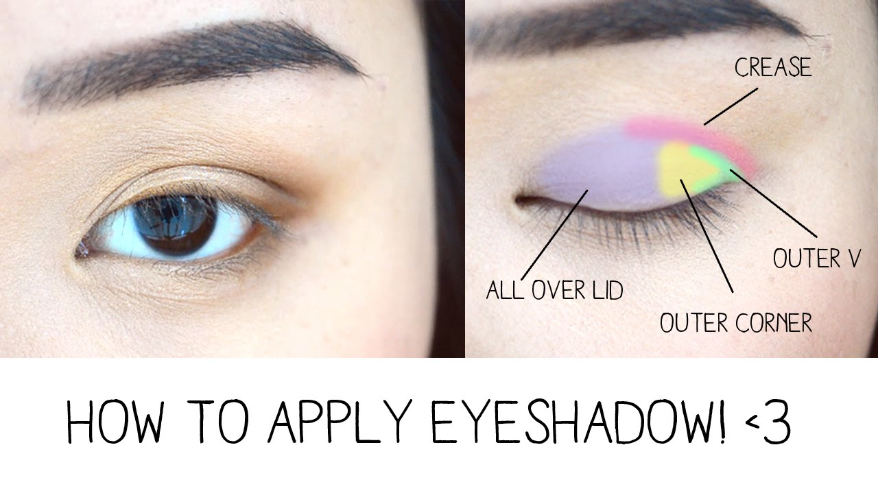 How to Apply Eyeshadow & Eye Anatomy! - YouTube