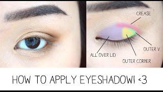 How to Apply Eyeshadow & Eye Anatomy!