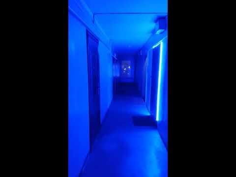 Квартира - студия на Книповича 21, г. Мурманск