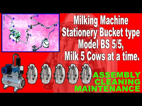 Bucket Milking Machine To Milk 5 Cows At A Time. Assembly, Maintenance & Cleaning Explained. BS5/5