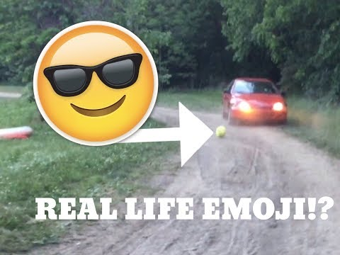 i-ran-over-real-life-cool-the-emoji-pillow!-**he-was-in-our-back-yard**