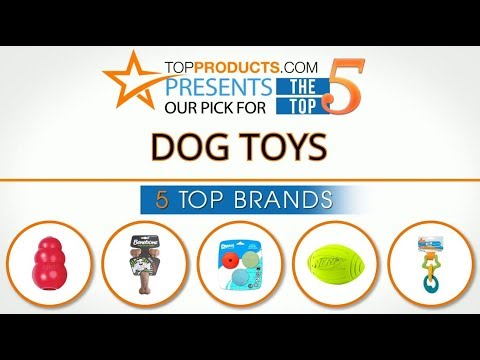 Best Dog Toy Reviews 2017 – How to Choose the Best Dog Toy