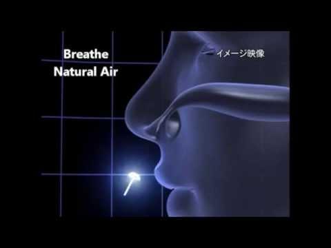 Nose Mask Pit Breathe Better – Pollen Hay fever Allergy – iOkidoki Vitality & Healthy Living