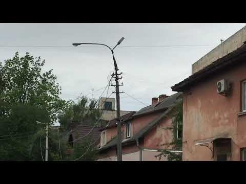 Чернівецький Промінь: Уся вулиця без світла: на Достоєвського дерево впало на стовп з проводами
