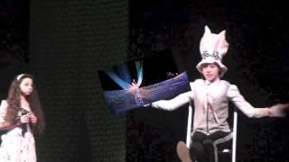 Алиса в стране чудес 1