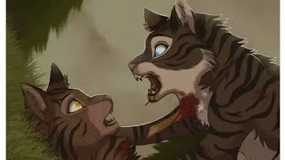 Коты Воители Коршун - Клип Stronger than you (санс)(заказ)