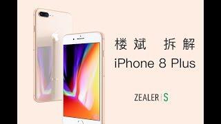 楼斌拆解 iPhone 8 Plus