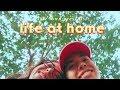 Life At Home 🌳 (Vlog.19)