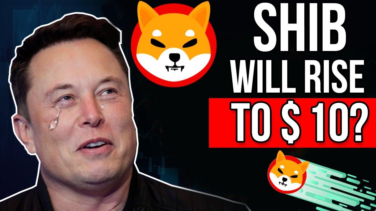 Elon Musk Reveals Why SHIB Will Reach  I Shiba Inu Price Prediction 2021