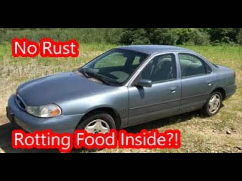 Auction Buy: $225 Ford Contour/Mondeo 5 Speed