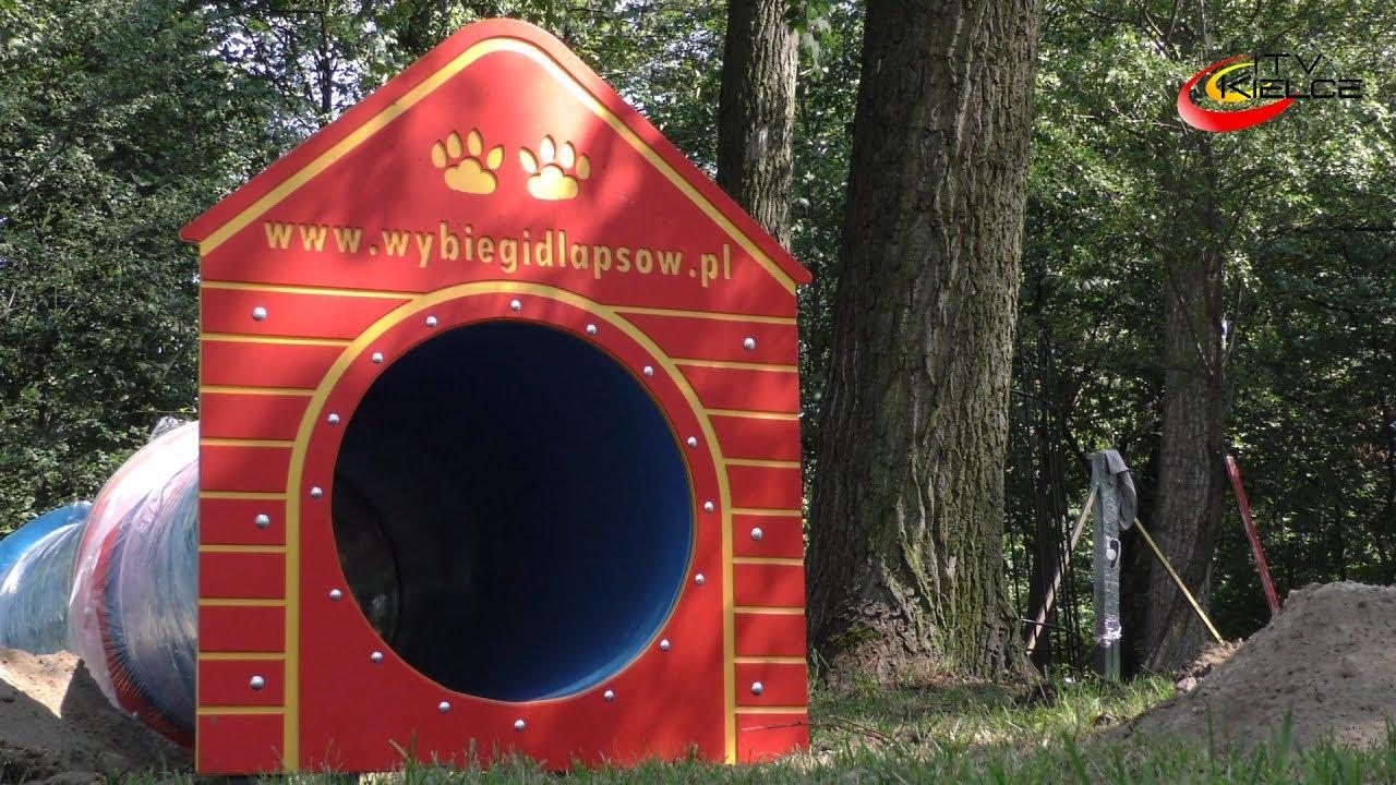 Powstaje Psipark – ITV Kielce
