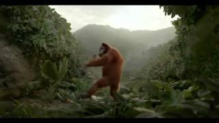 танцующий орангутанг
