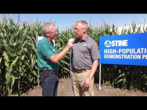 Stine High-Population Corn Program (Farm Progress Show 2016)