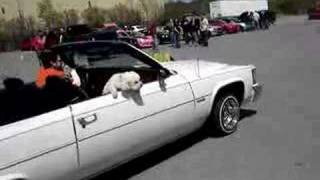 Chris rollin in the show in the ragtop Caddy