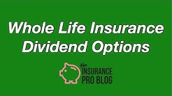 Whole Life Insurance Dividend Options