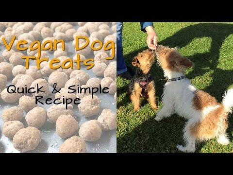 Homemade Vegan Dog Treats, Great For Training