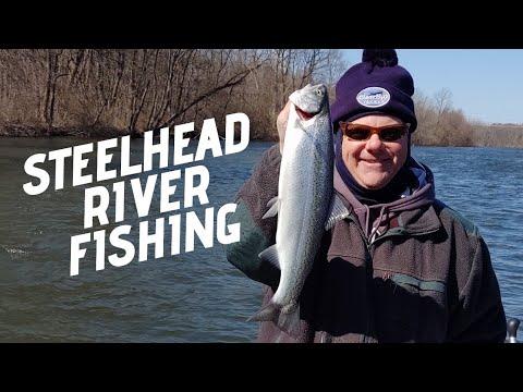 Steelhead Fishing The St Joe River